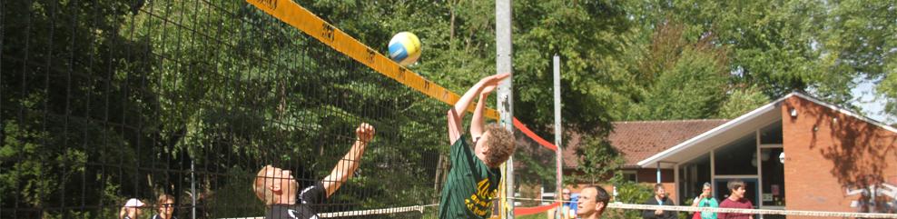Kopfgrafik - Volleyball